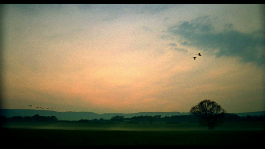 6_Sunrise.jpeg