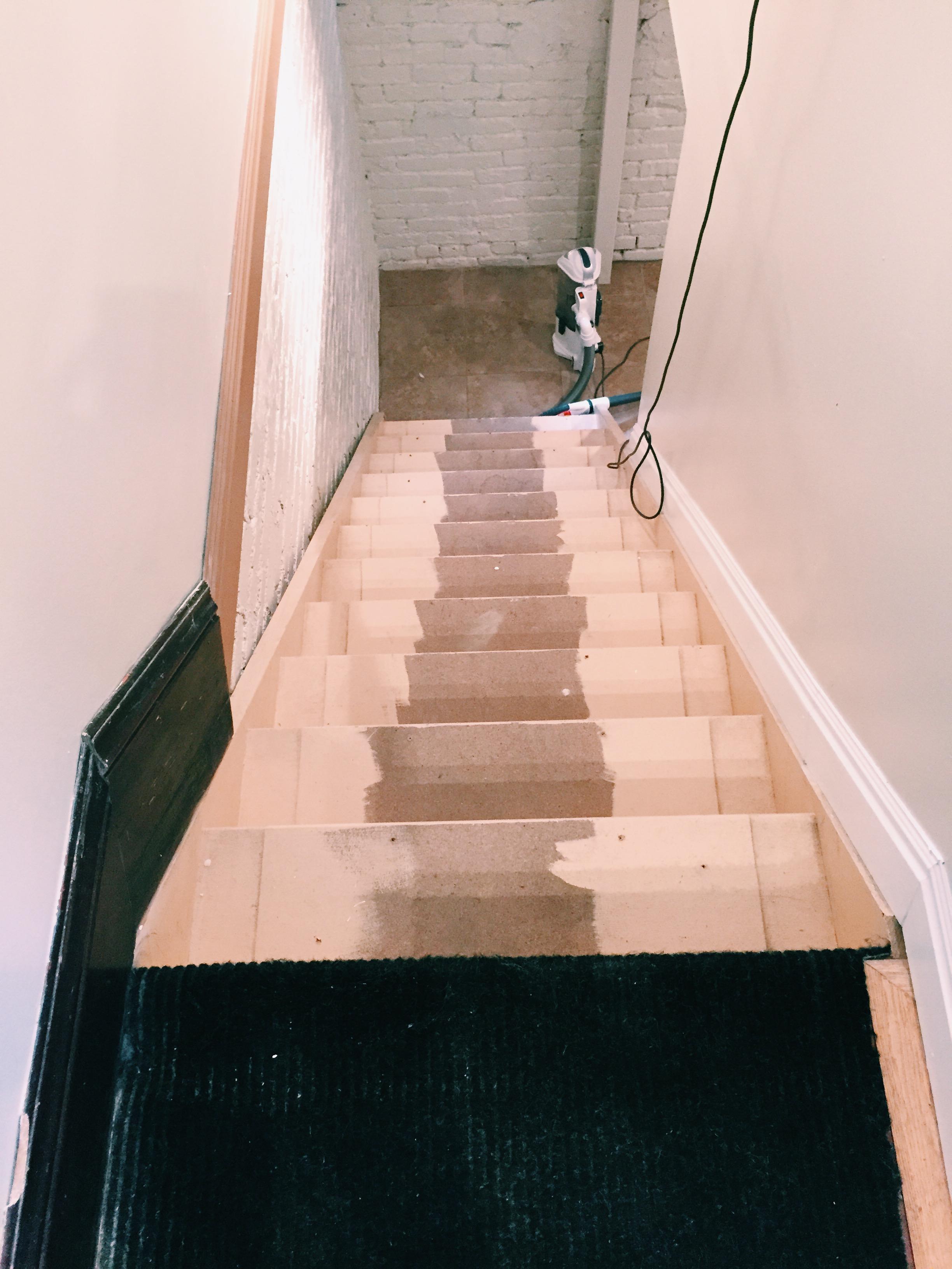 Stairs minus rug
