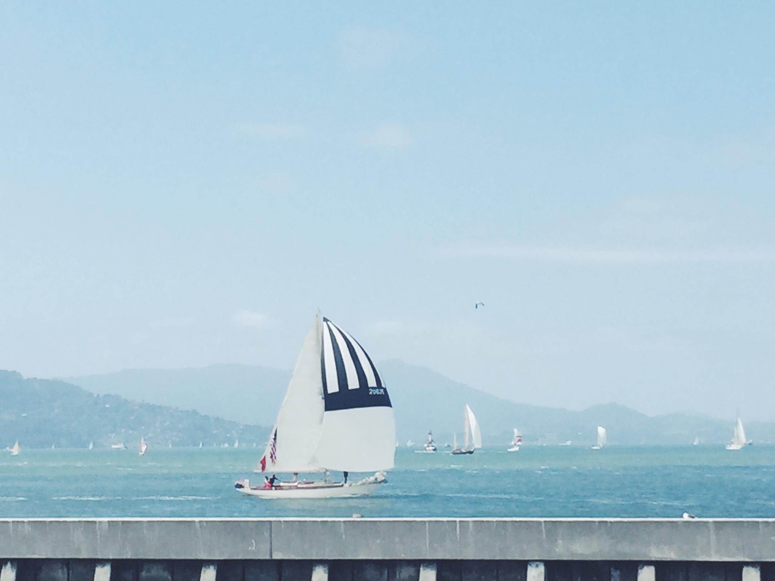 Pier 39 - Sailboat