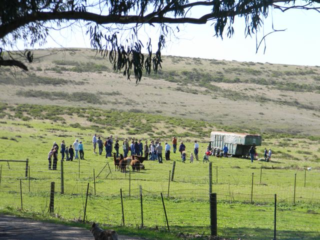 ranch tour 2.jpg