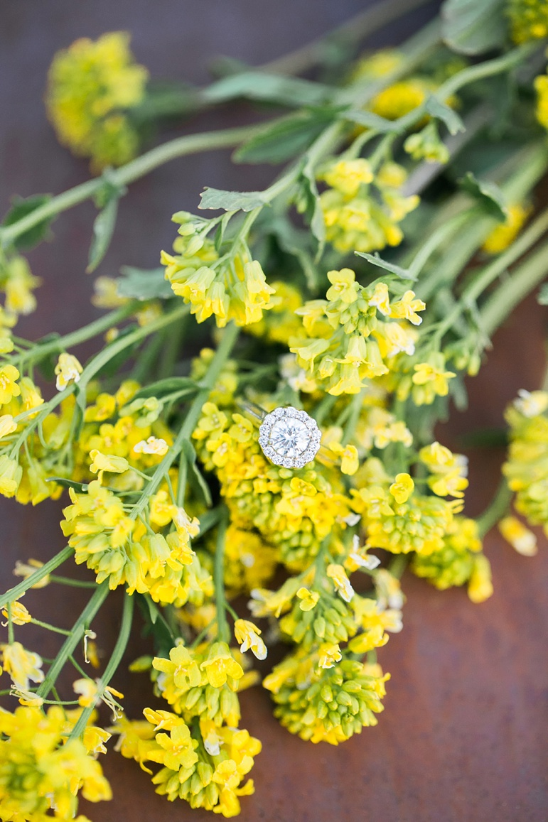 Milwaukee Wisconsin Wedding Photographers Green Bay WI Wedding Planners Door County Wedding Karen Ann Photography Kohler Whistling Straights Milwaukee Engagement Session Beckets Oshkosh Wedding