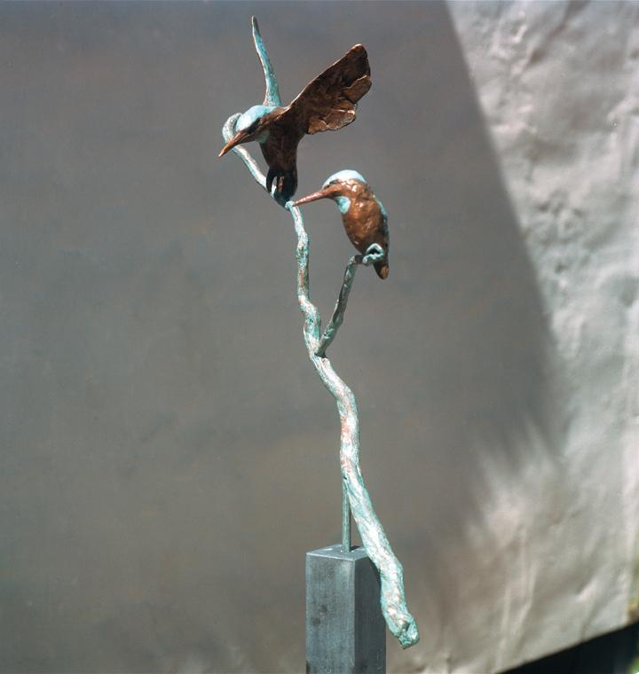 Vliegende en zittende ijsvogel op tak.jpg