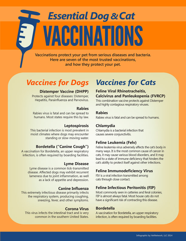 infographic_vaccinations.jpg