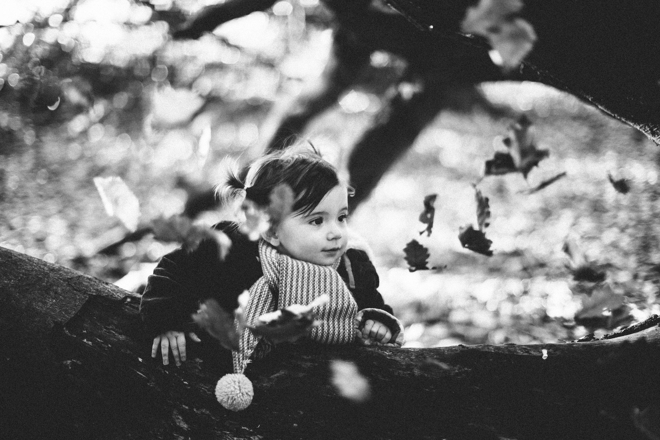 manzanitaphoto19608.JPG