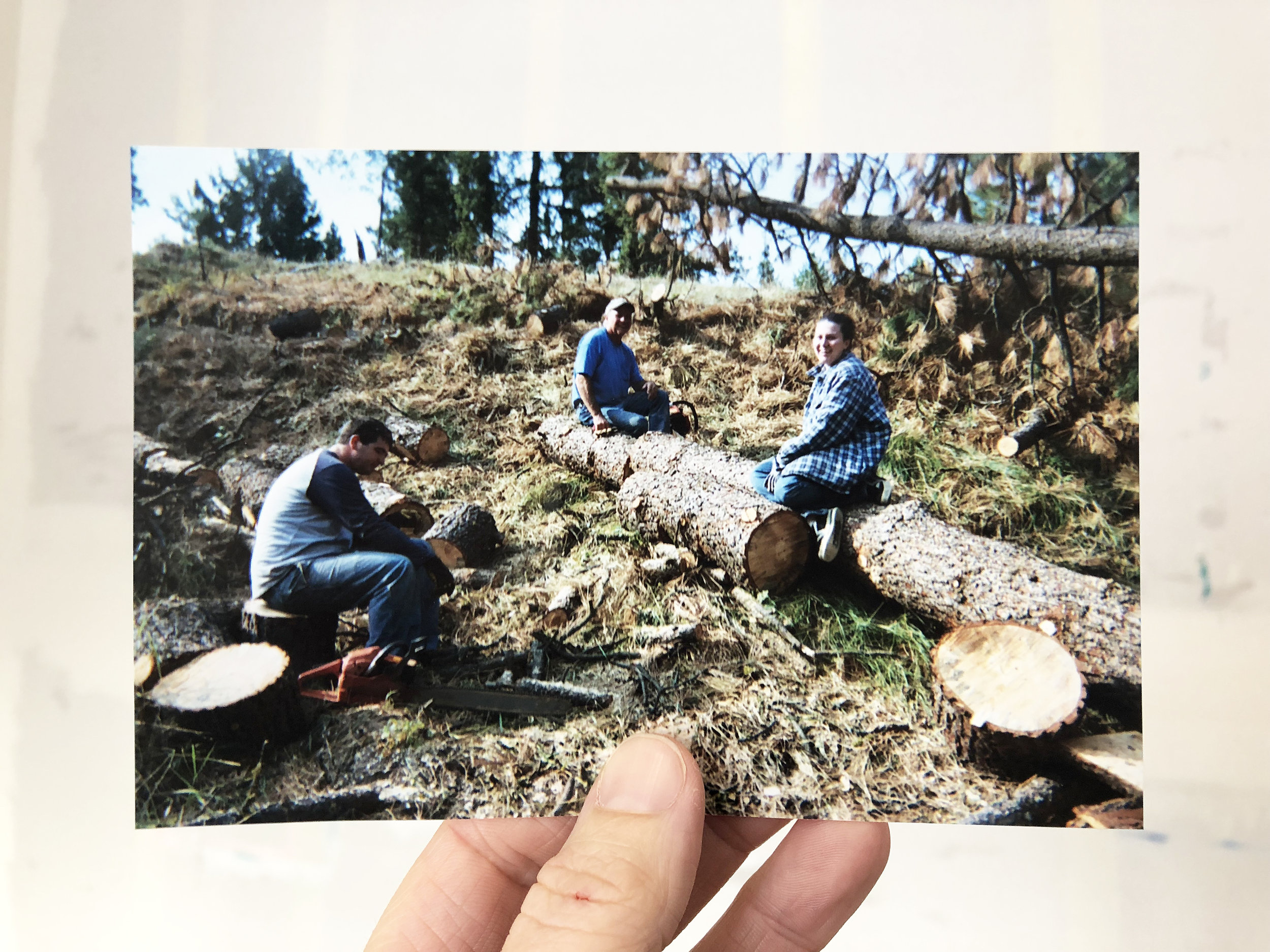 Logging in the Pacific Northwest