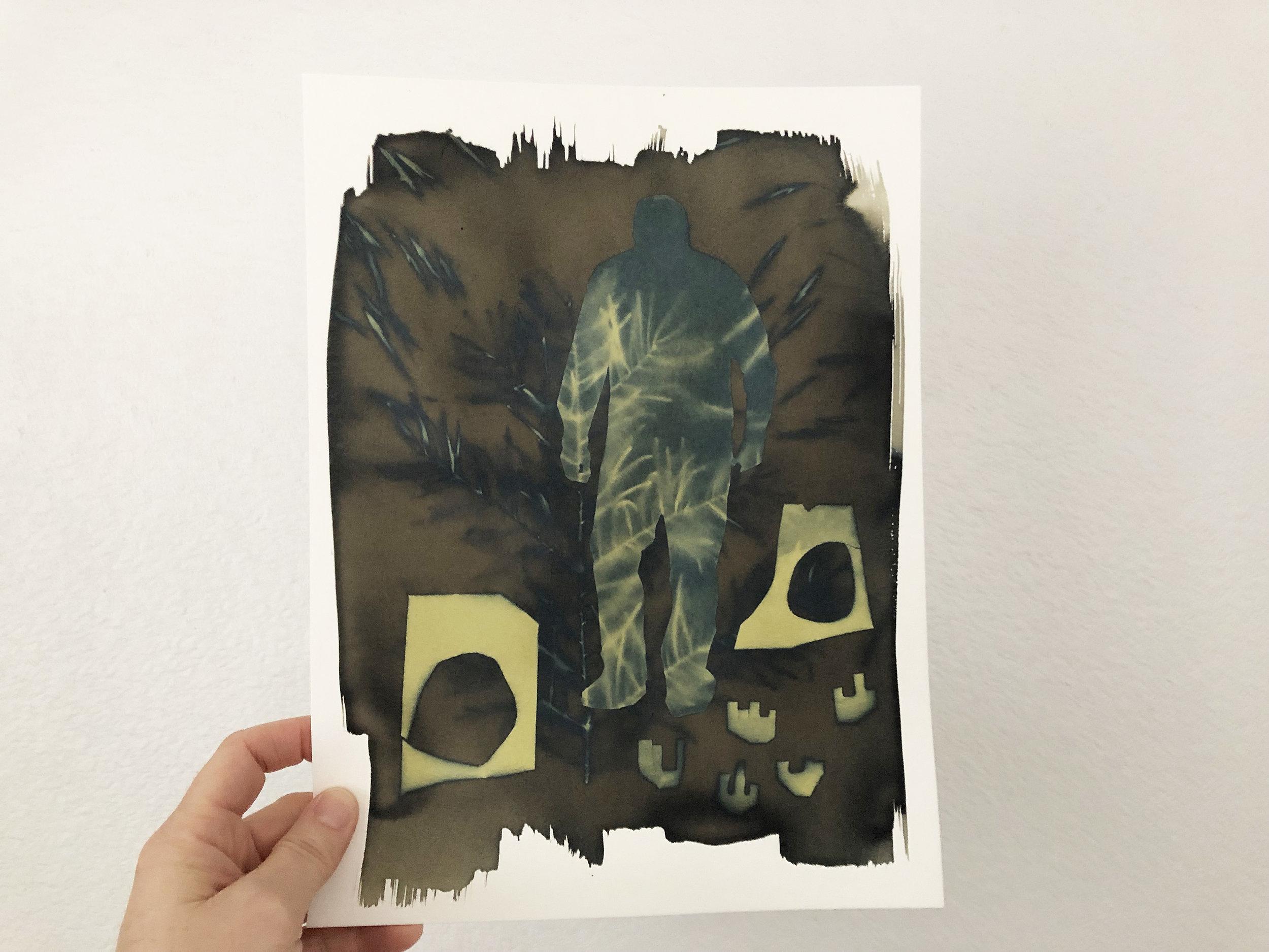 exposed cyanotype print