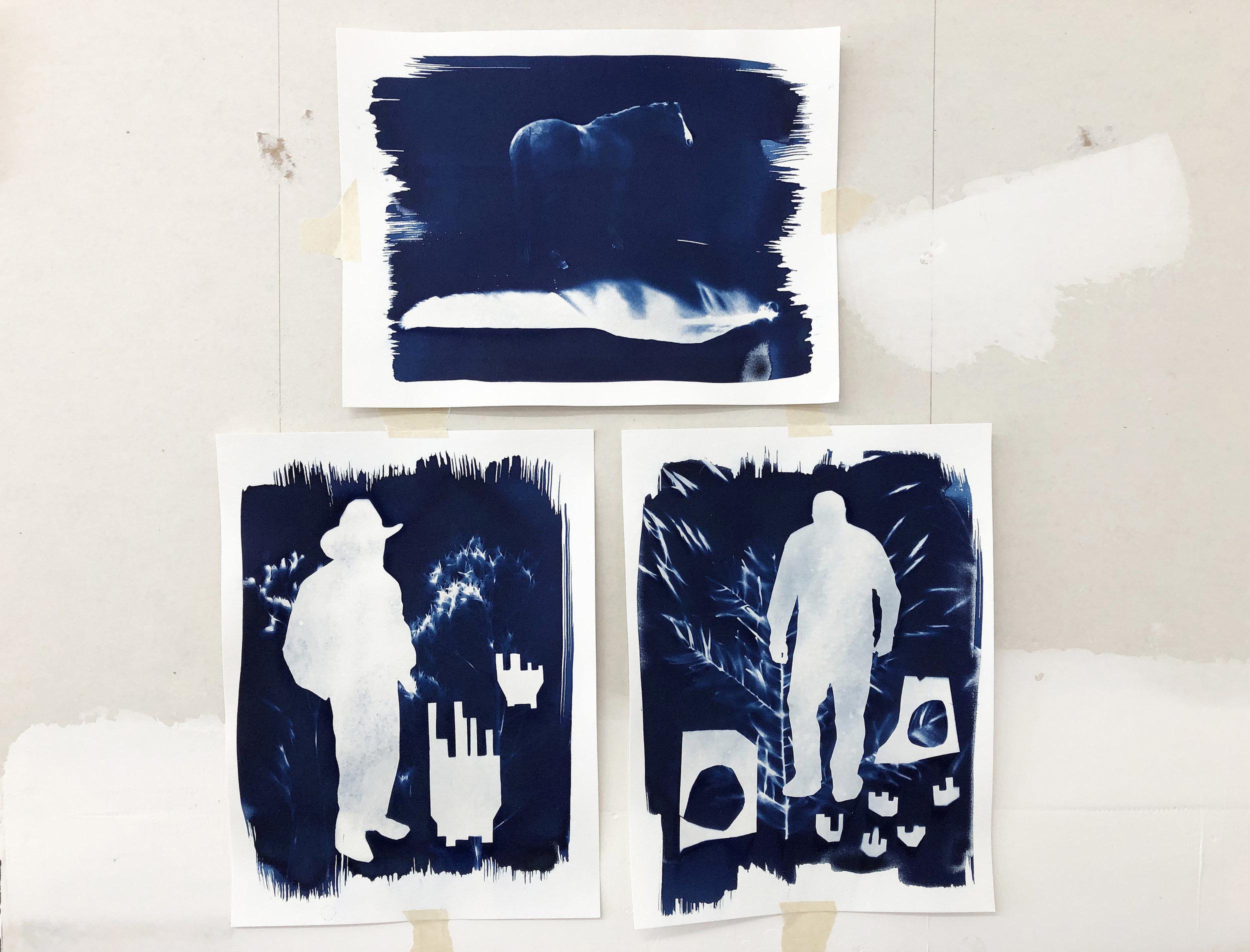 cyanotype sun printing