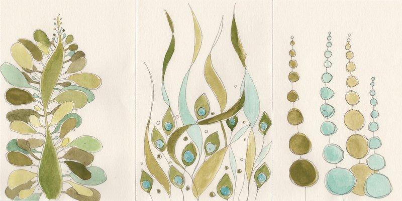 Seaweed Sketches