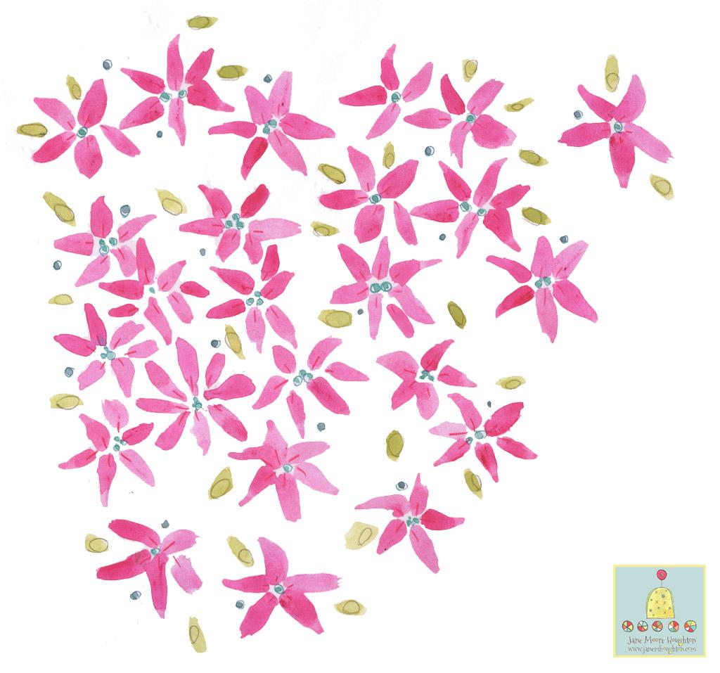 Sketchbook floral pinks.jpg