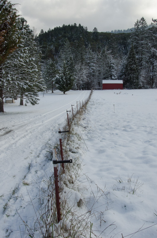 A beautiful snowy day at the ranch.