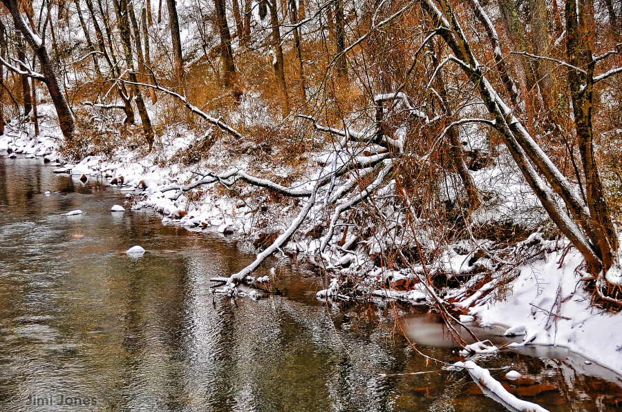 Flowing Stream in Winter