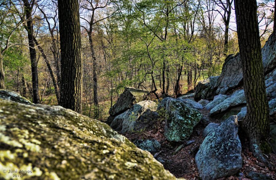 Rocky Trail 3