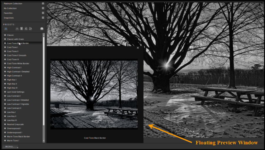Photograph: Topaz Black and White Effects 2 Preview Window