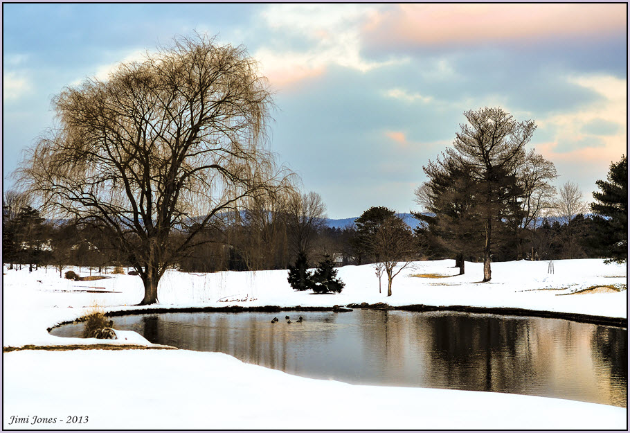 Winter at the Pond