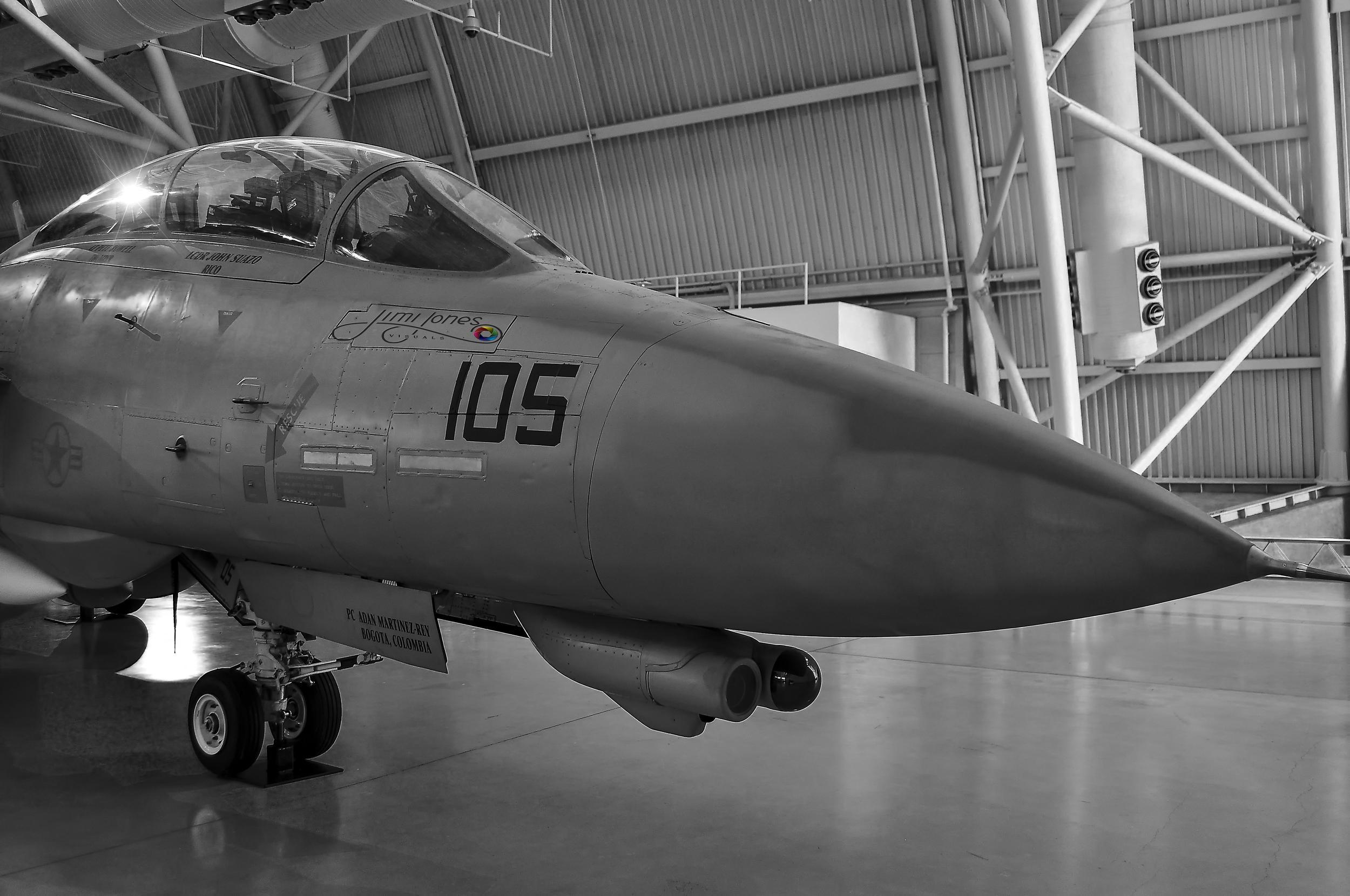 F-14 D (R) Tomcat in B&W                                                      BUY