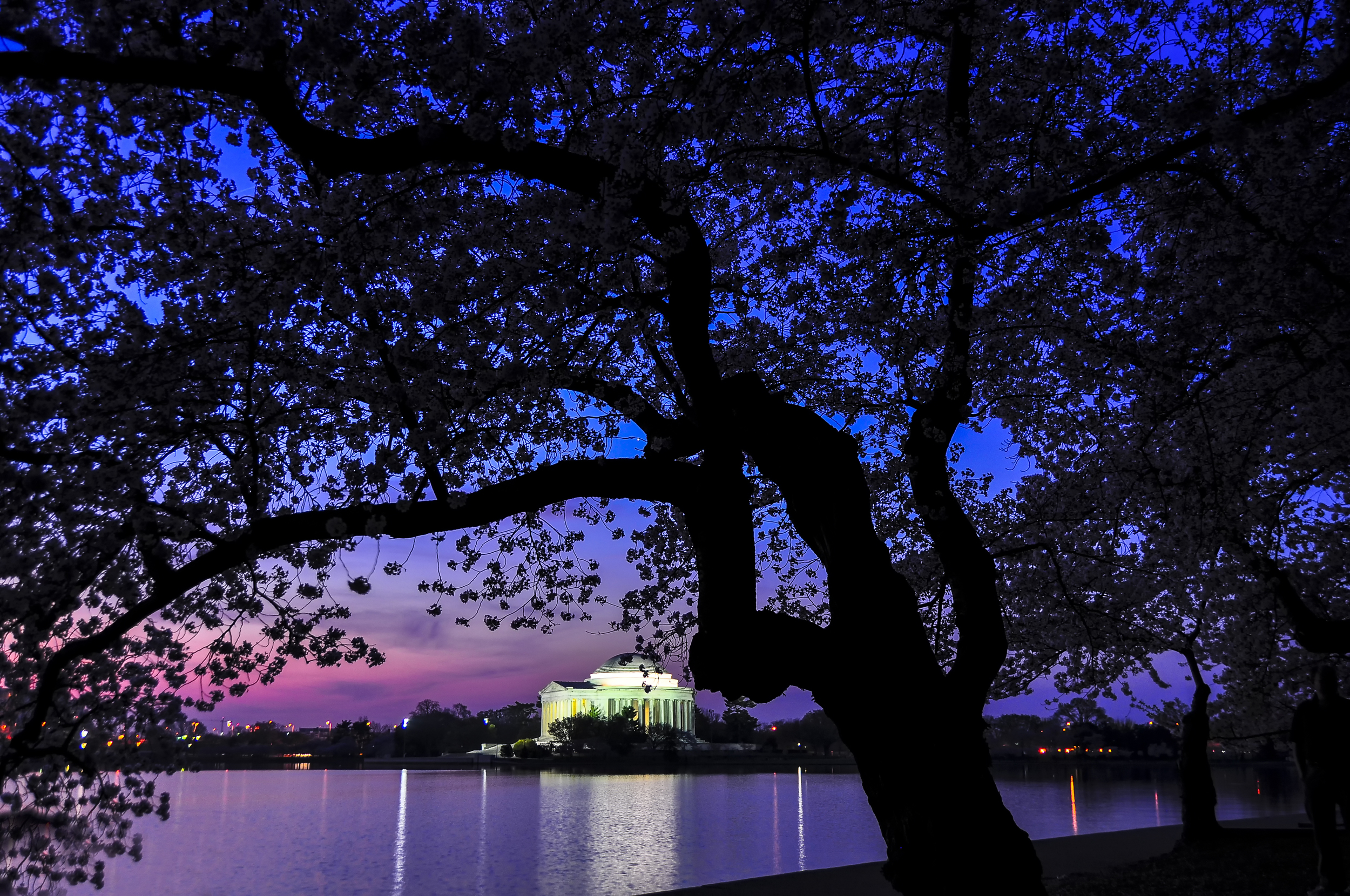 Dawn at the Jefferson Memorial.jpg