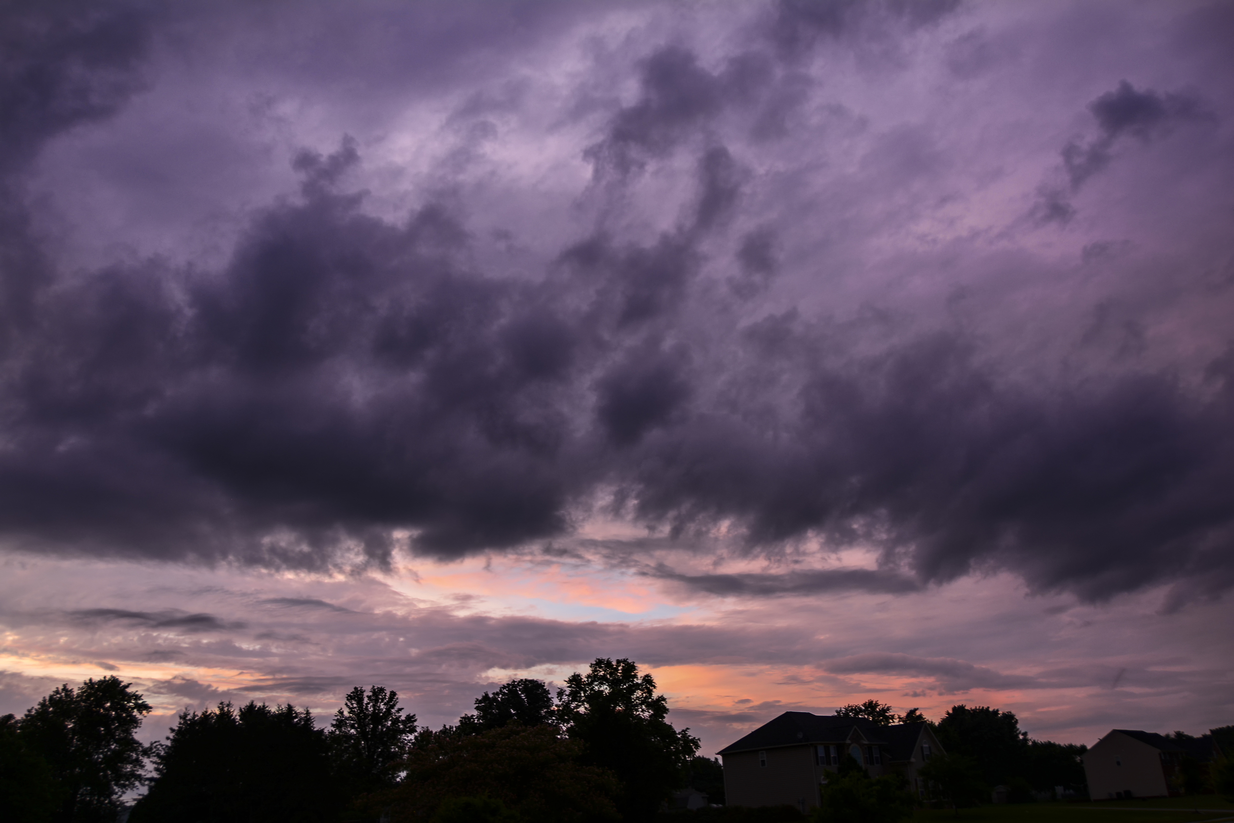 Purple Skies.jpg