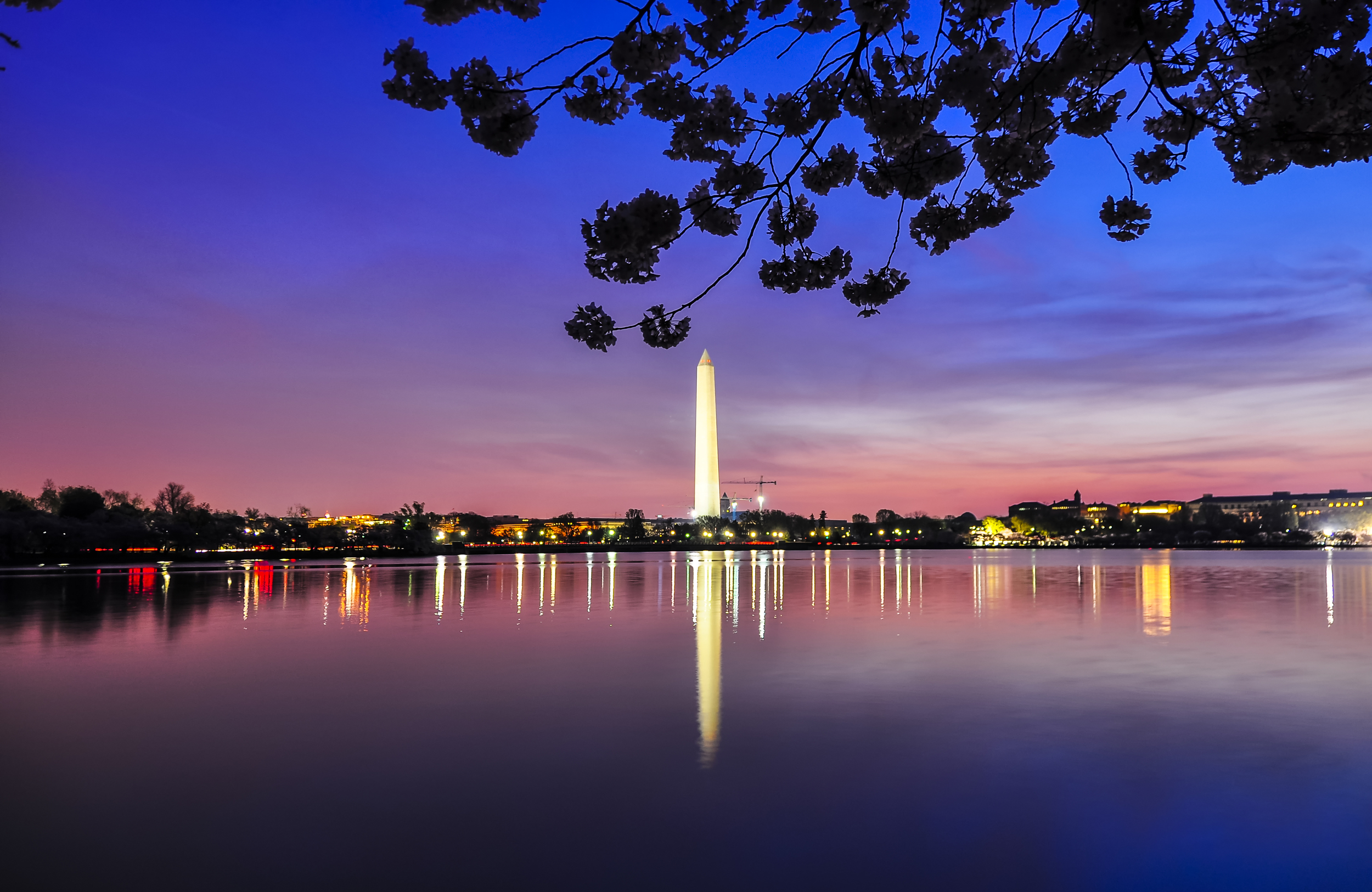 Dawn at the Washington Monument.jpg