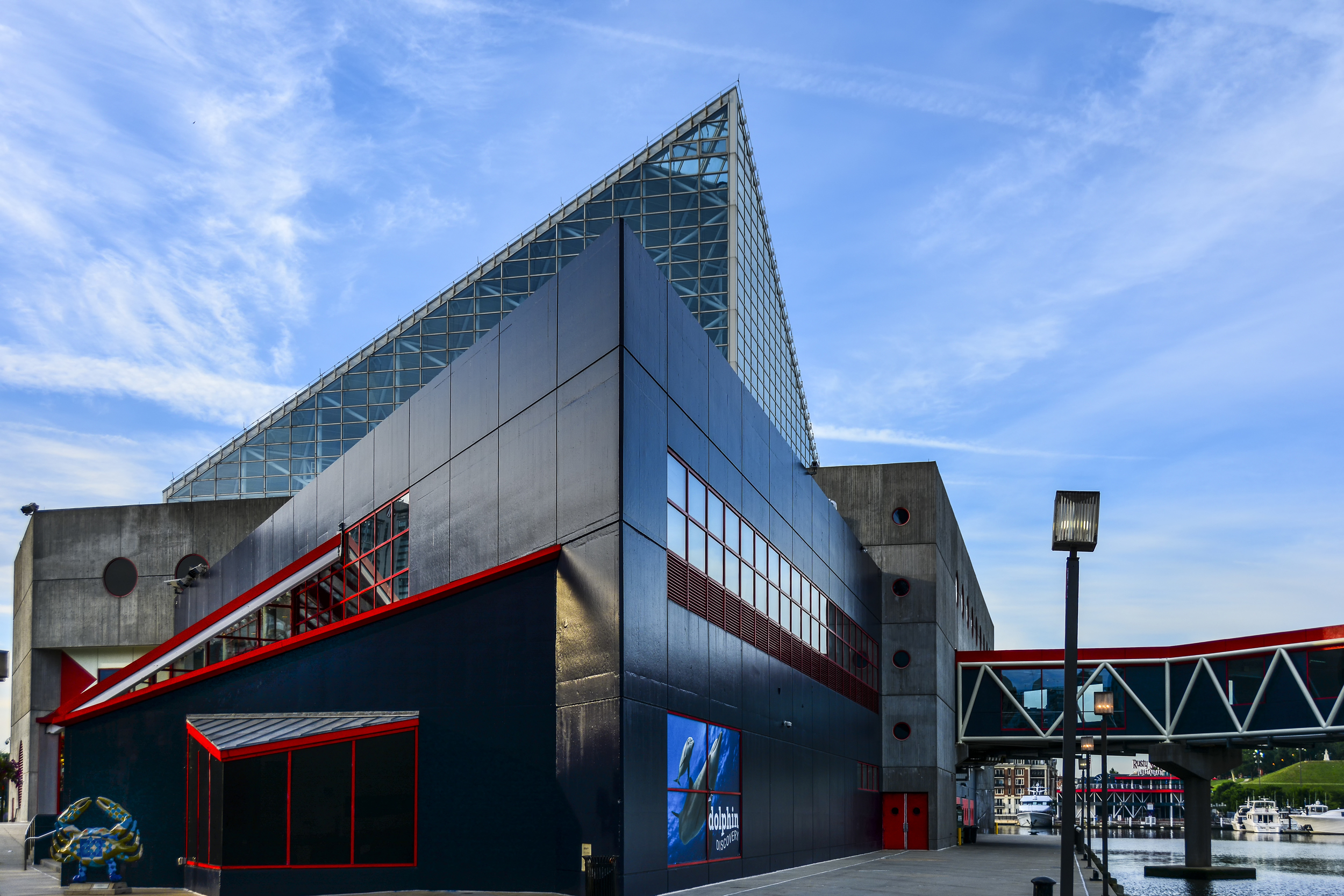 National Aquarium in Baltimore.jpg