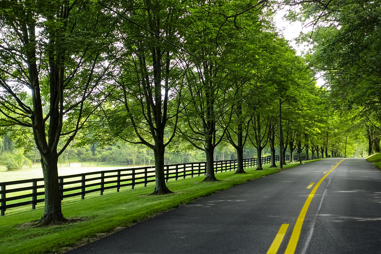 Road Trippin Again.jpg