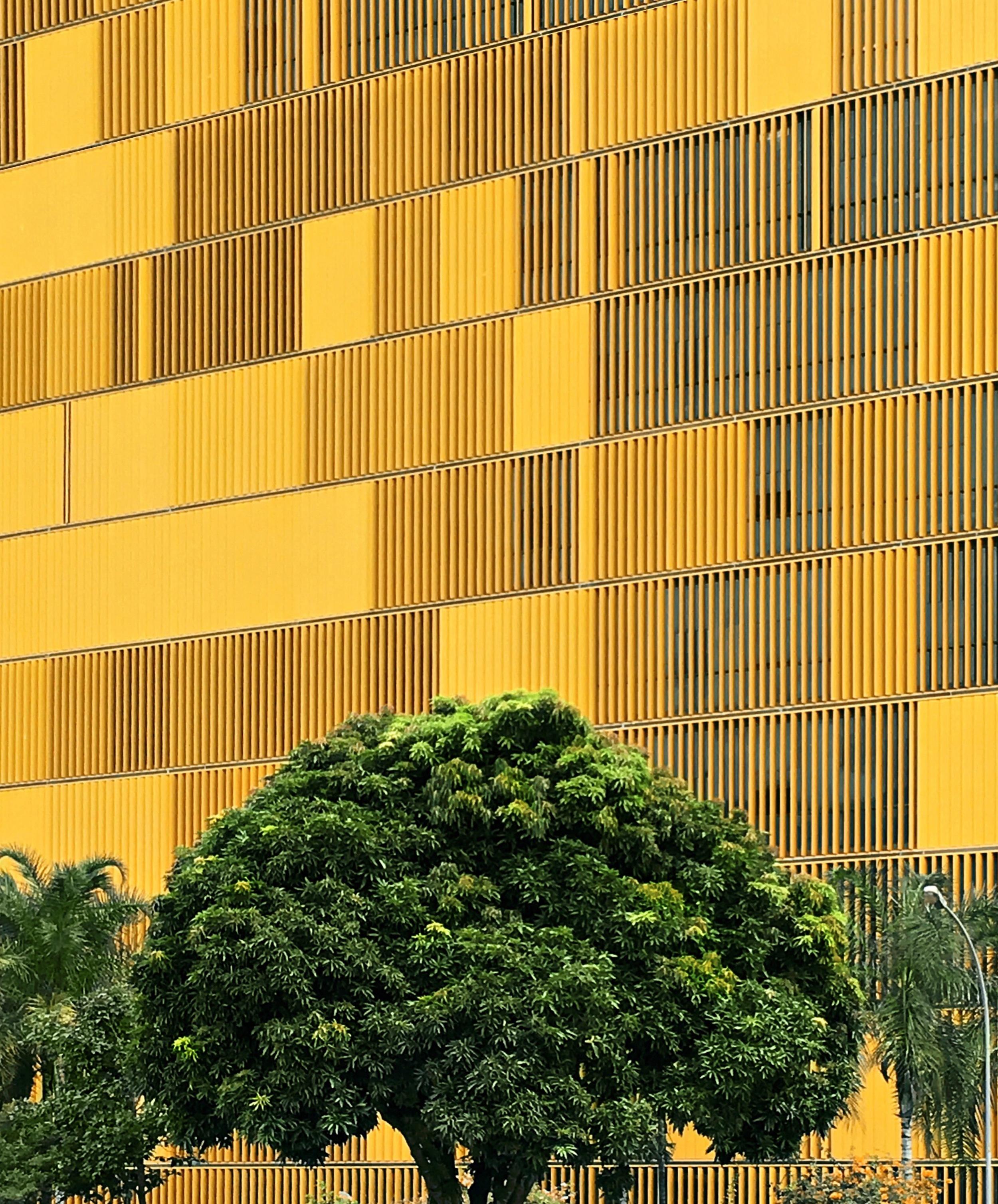 Câmara dos Deputados / Parliament Building