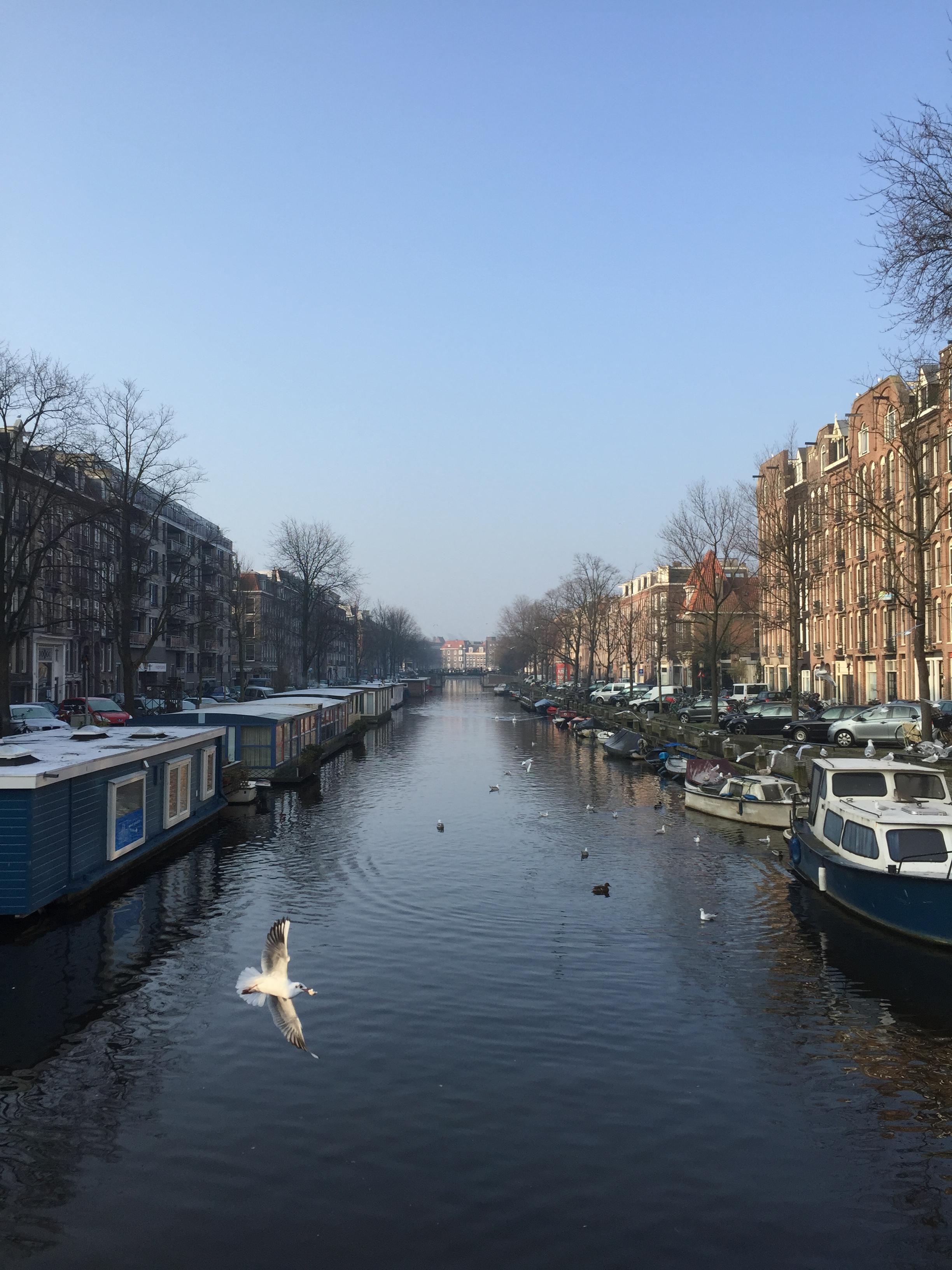 DannyZappa-Amsterdam-2