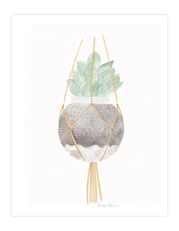 Very Sarie hanging succulent terrarium painting illustration