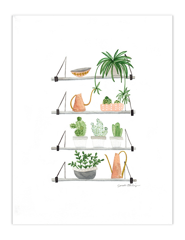Very Sarie painting of plants on shelves