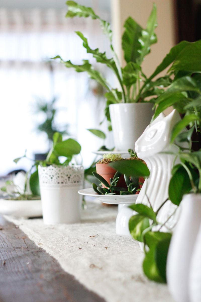 Plant and white pots tablescape