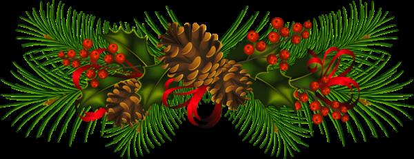 Christmas_Pine.png