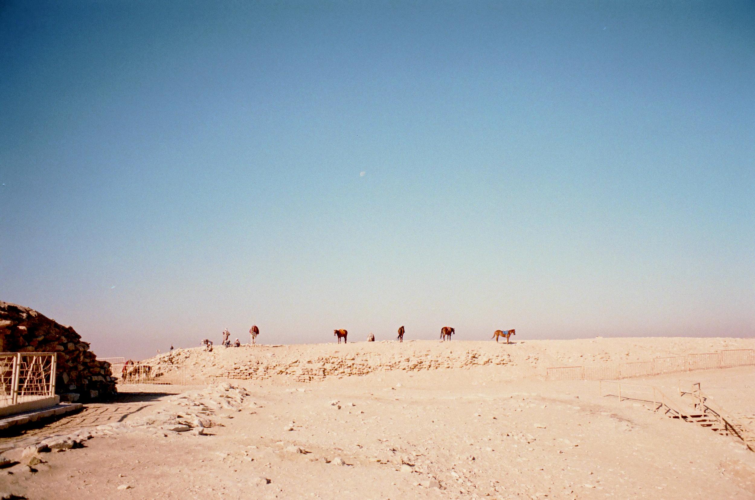 egypt9.jpg