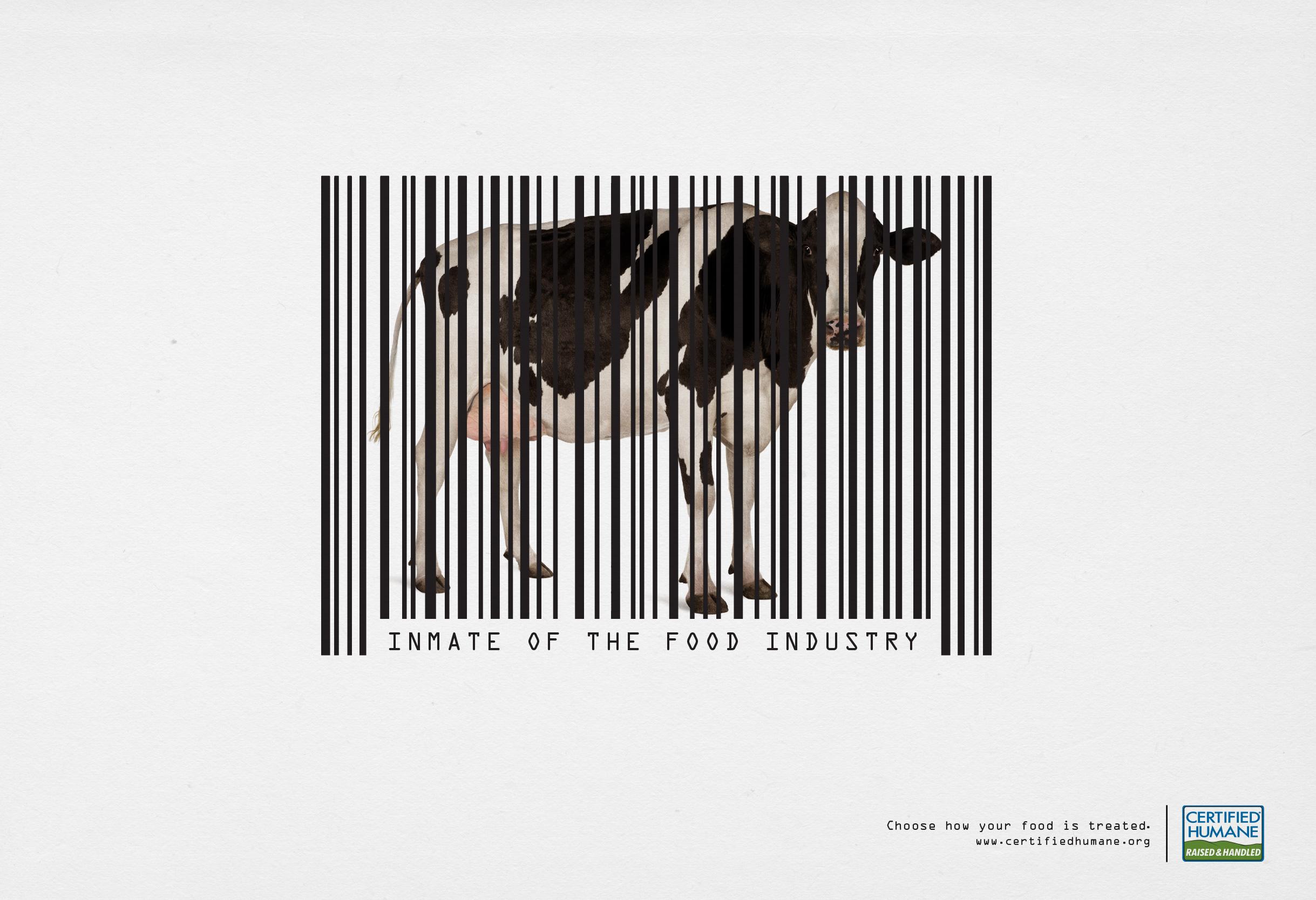 certified_humane_cow.jpg
