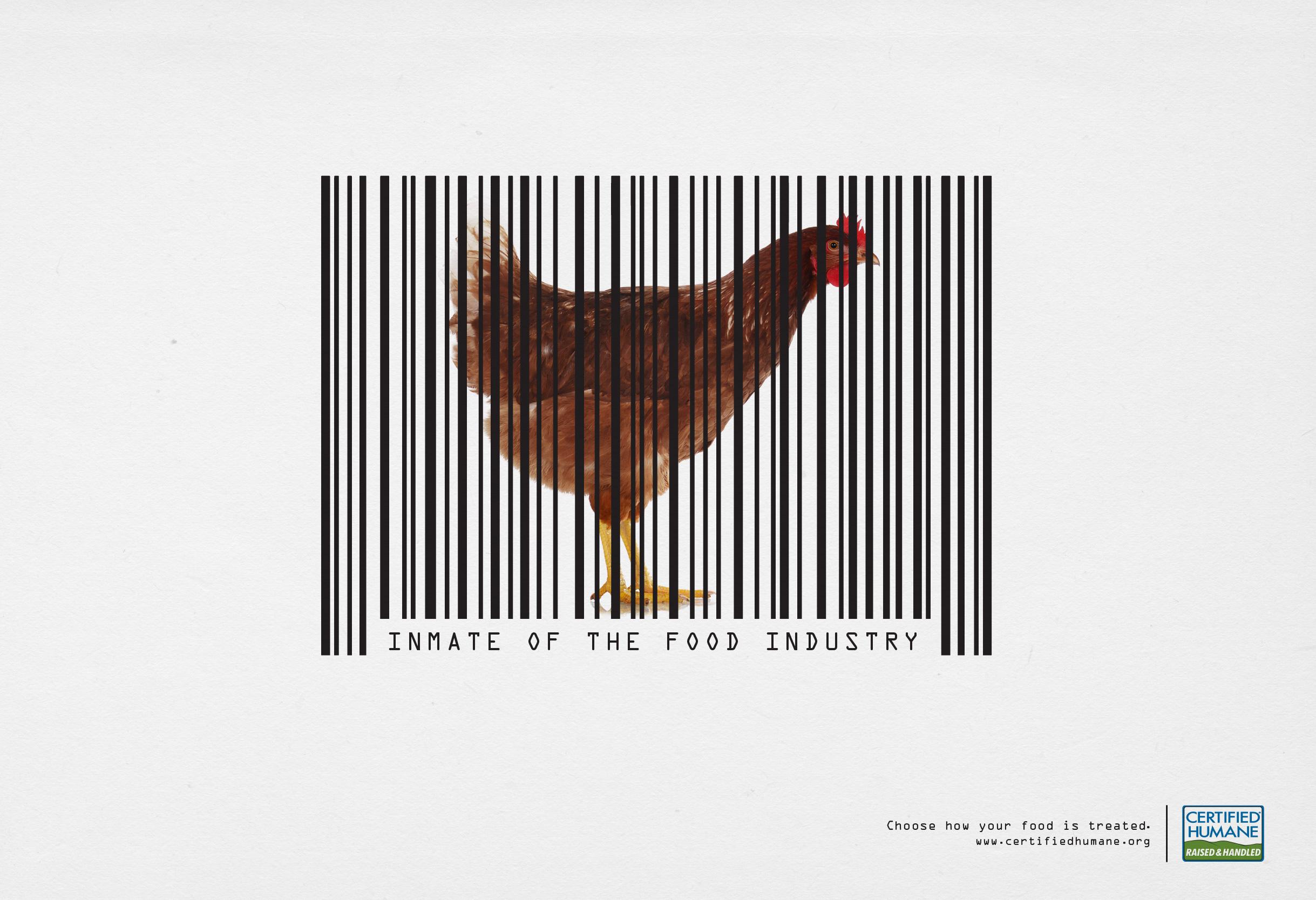 certified_humane_chik.jpg