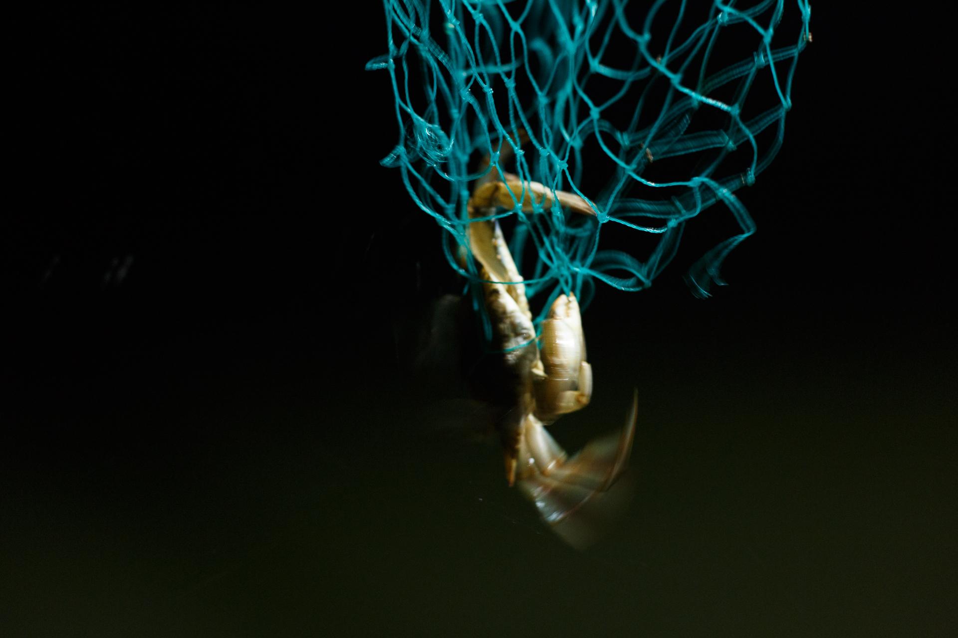 Crabbing Album-13.jpg
