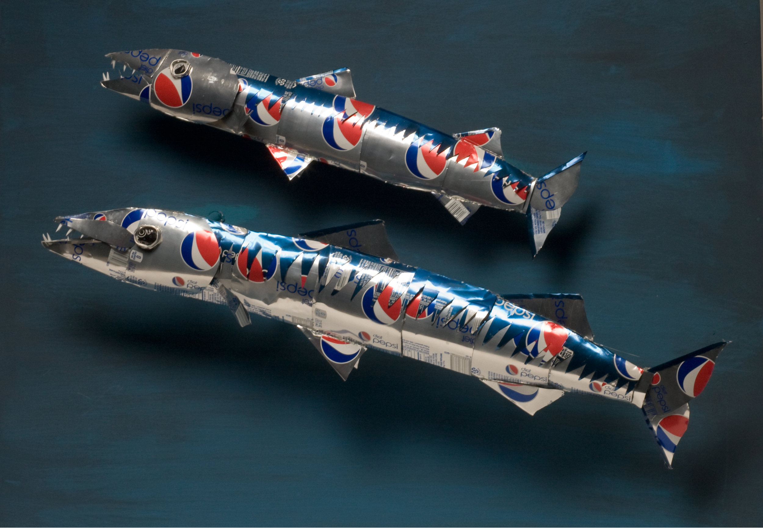 Barracudas.jpg
