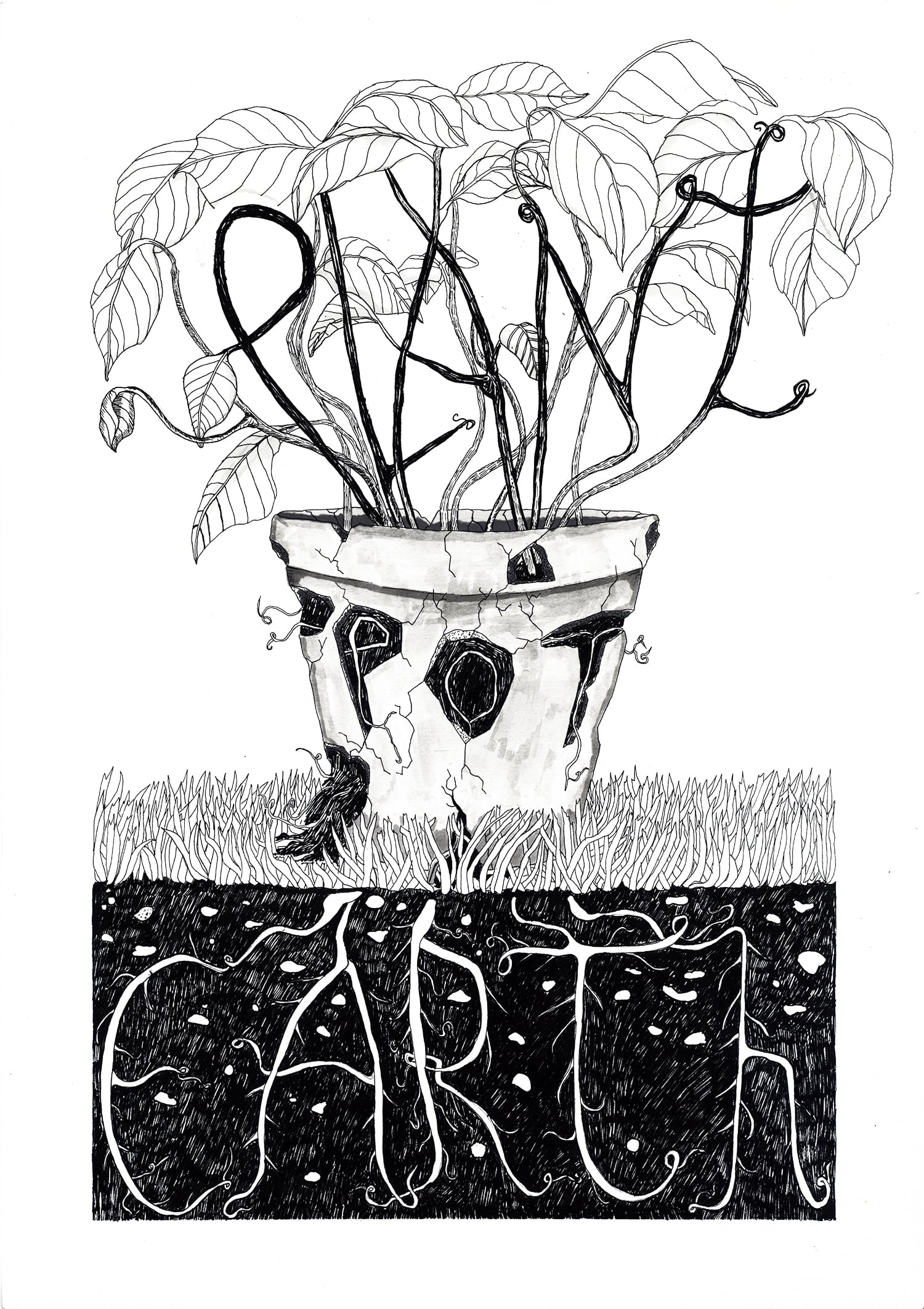 Plant, Pot, Earth for Prime Magazine.