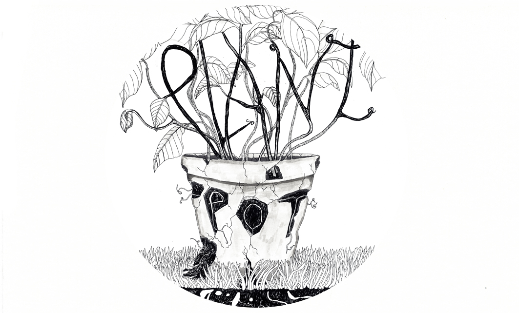 Plant, Pot, Earth for print magazine