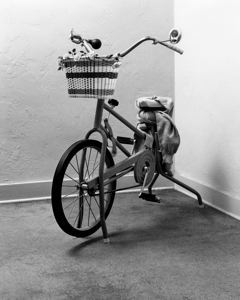 "Eleanor Antin,  Yvonne Rainer   from ""Portraits of Eight New York Women"" , 1970, Exercise bike, basket, flowers, horn, sweatshirt, text panel."