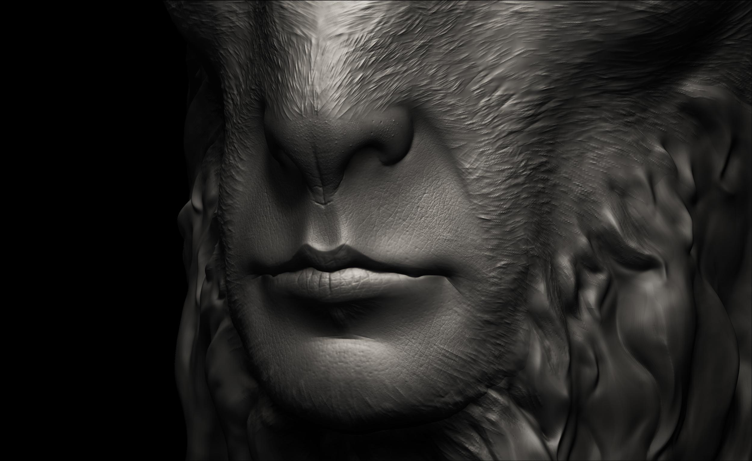 Mouth Detail Left.jpg