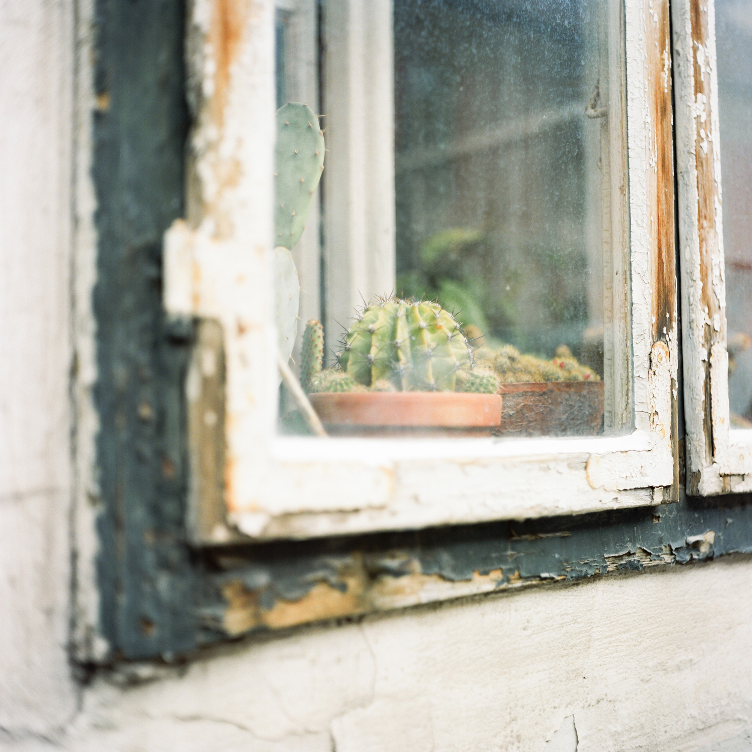 016-katie-mitchell-film-travel-photographer-paris-france-italy-california.jpg