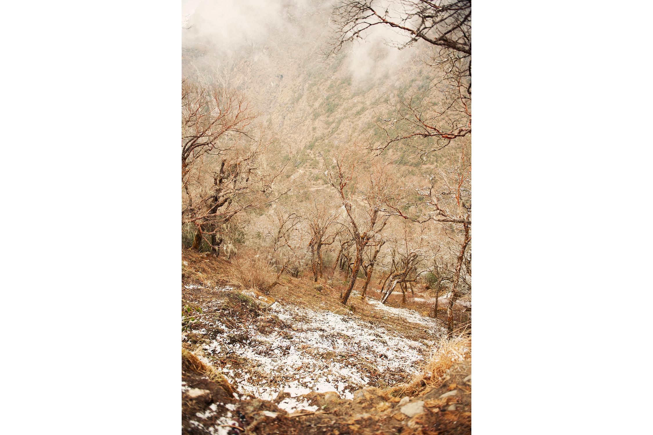 Katie_Mitchell_Photography_India_Mongolia_Worldwide_Travel_Photographer_18.jpg