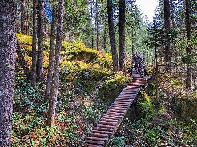 Somewhere Over There, Squamish . #mtb #mountainbike #singletrack #squamish #sorca #mtbBC #explorebc #ridingfeelsgood #biketrip #biketravel #bringyourbike #bikebag #bikebagrentals #evoc