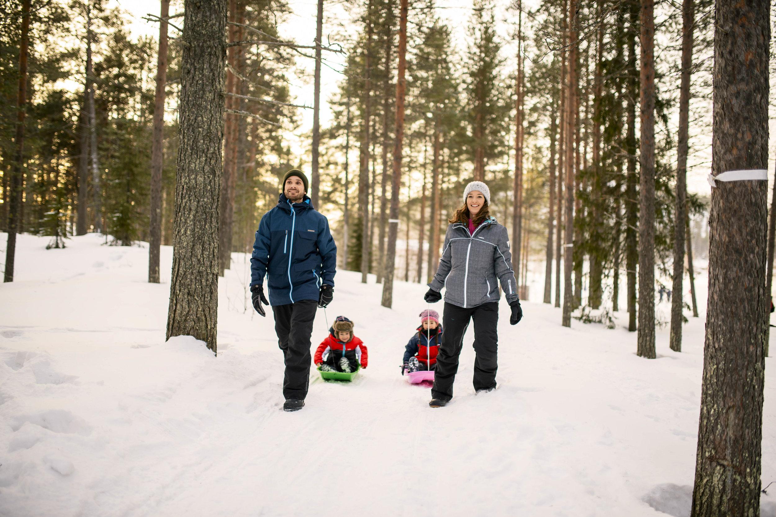 Monarch Lapland 4.jpg