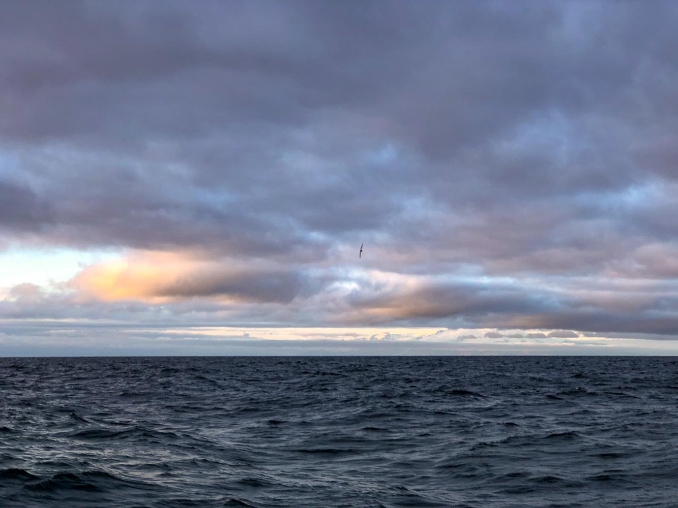 Sunset off Iceland