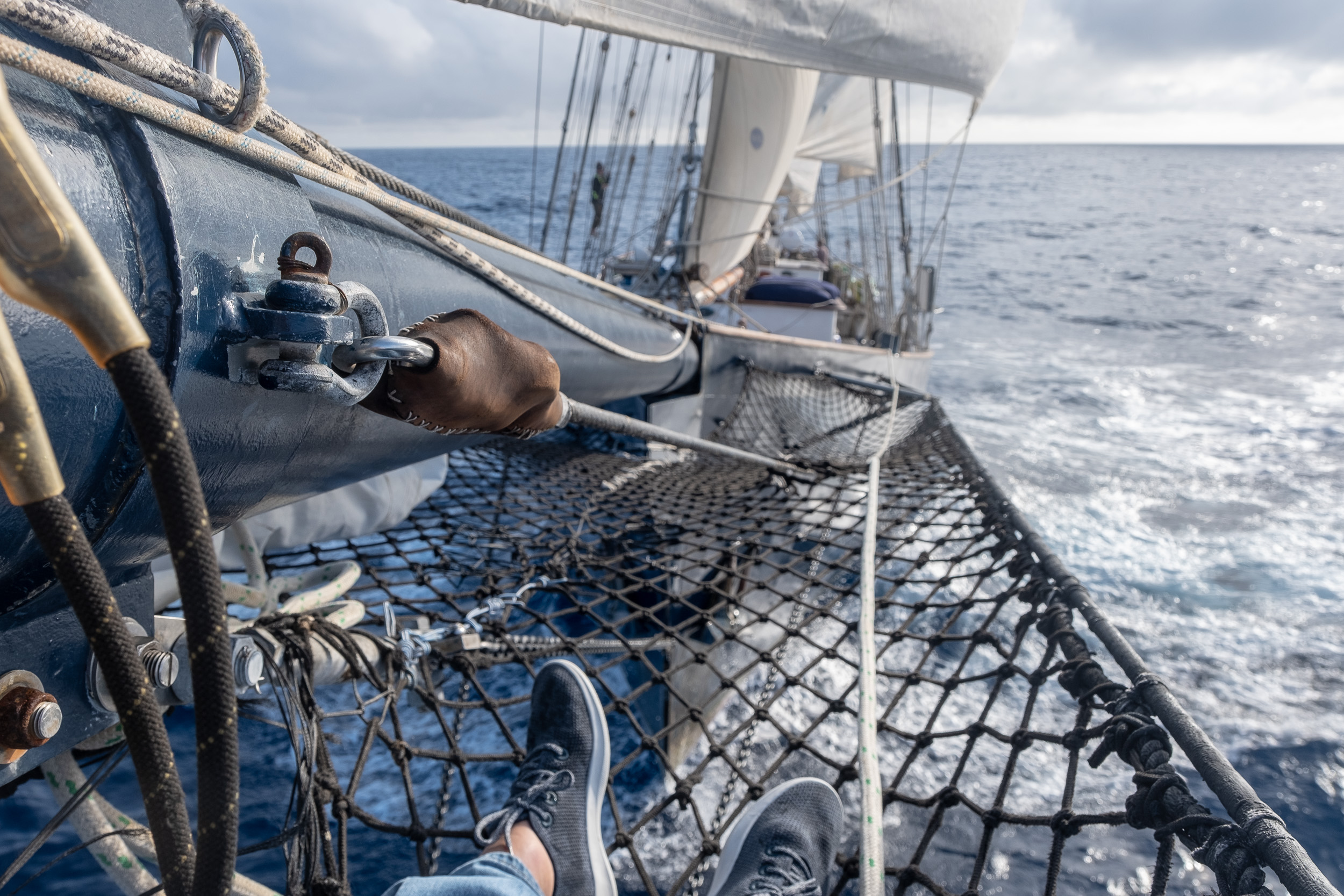 From the end of the bowsprit, no dolphins, just Allbirds!