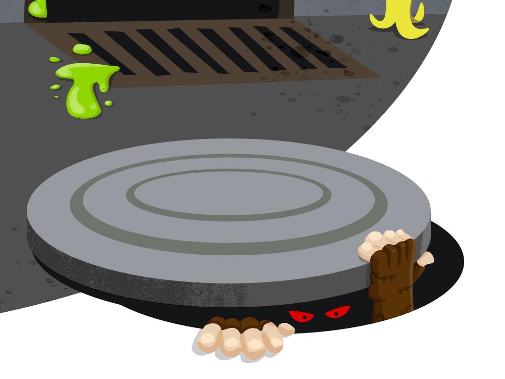 turtle_processB.jpg