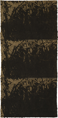 Untitled 99-21, 1999 (2018)
