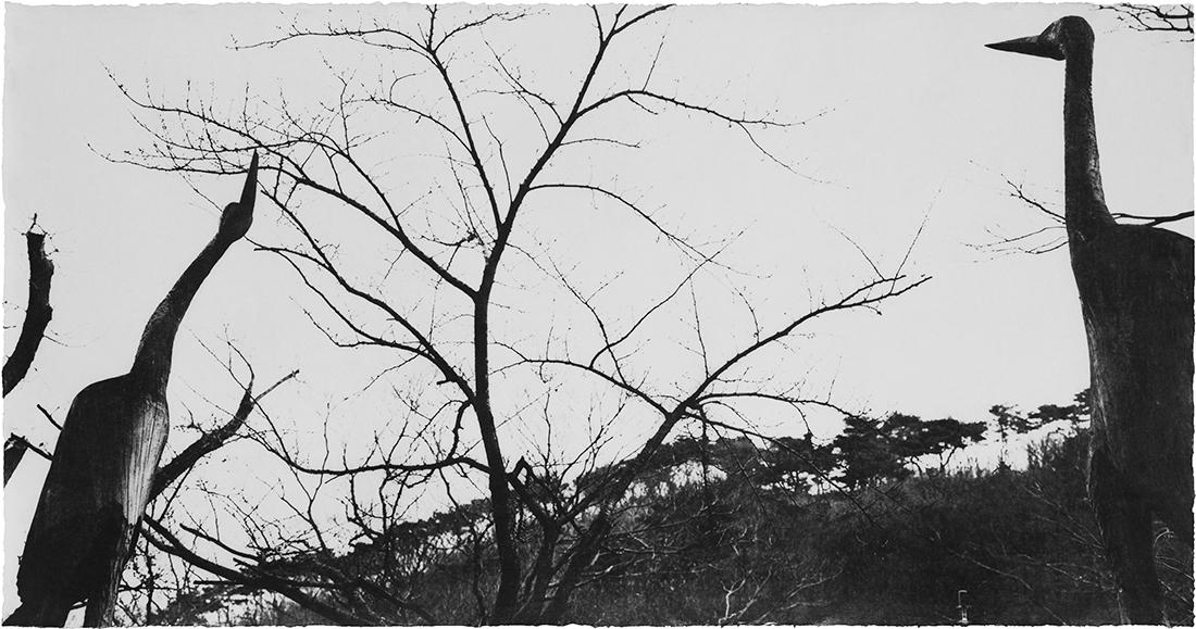 Wind 07-68.jpg