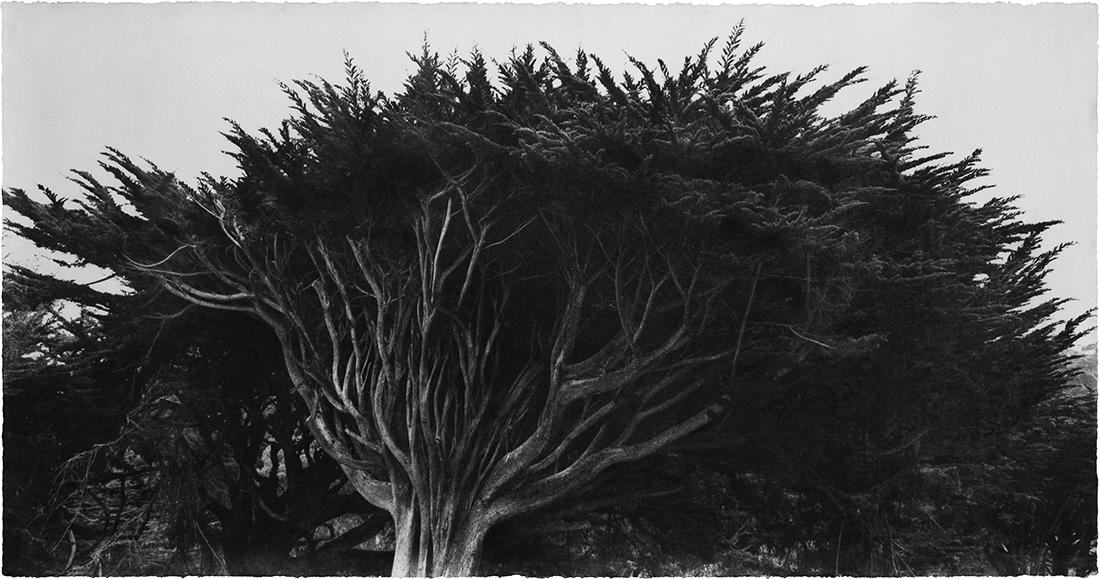Wind 07-107.jpg