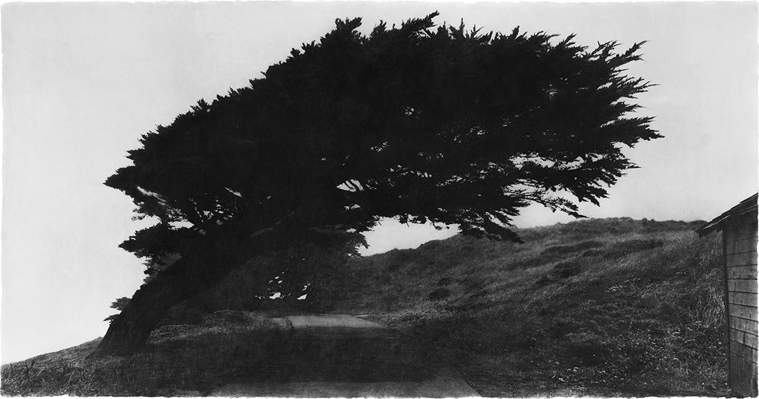 Wind 07-73.jpg